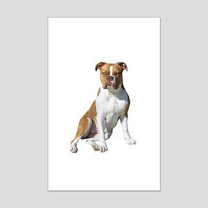 American Bulldog (brn-W) Mini Poster Print