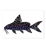 Angel Squeaker Upside-down Catfish Postcards (Pack