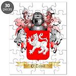 O'Tohill Puzzle