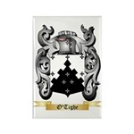 O'Tighe Rectangle Magnet (100 pack)