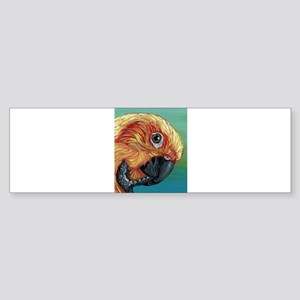 Sun Conure Parrot Bumper Sticker