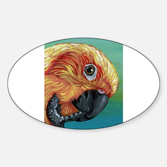 Sun Conure Parrot Decal