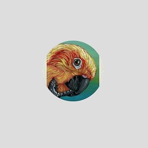 Sun Conure Parrot Mini Button