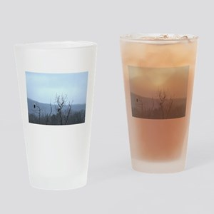 Bald Eagles Drinking Glass