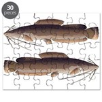 Vundu Catfish Puzzle