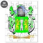 O'Shanassy Puzzle