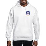 Ortiz Hooded Sweatshirt