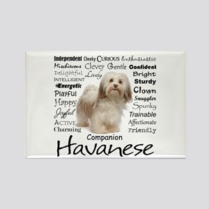 Havanese Traits Magnets