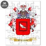 O'Rodain Puzzle