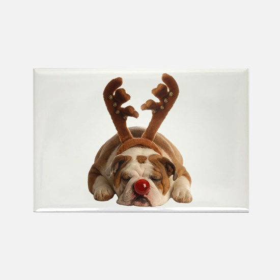 Christmas Reindeer Bulldog Magnets