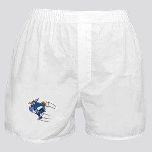 B is for blue jay Boxer Shorts