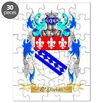 O'Phelan Puzzle