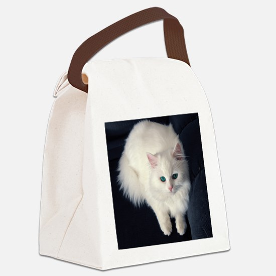White Cat with Blue Eyes Canvas Lunch Bag