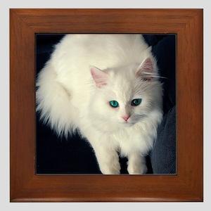 White Cat with Blue Eyes Framed Tile