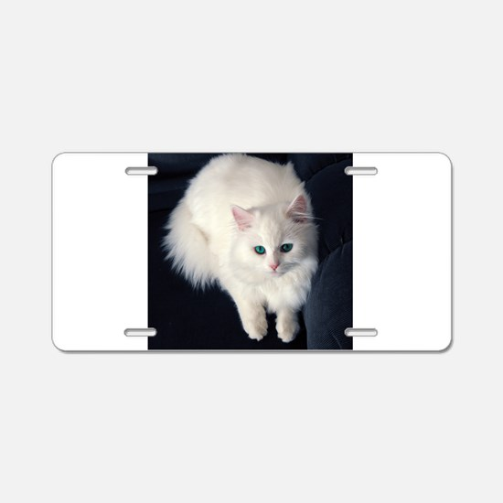 White Cat with Blue Eyes Aluminum License Plate