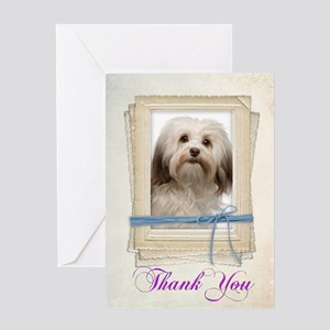 Havanese Thank You Greeting Cards