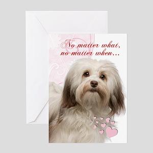 Havanese Valentine's Day Greeting Cards