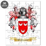 O'Mannin Puzzle