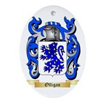Olligan Oval Ornament