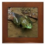 Bullfrog Framed Tile