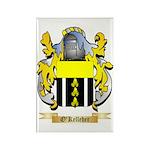 O'Kelleher Rectangle Magnet (100 pack)