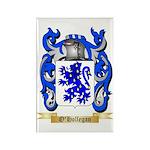 O'Hollegan Rectangle Magnet (100 pack)