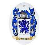 O'Hollegan Oval Ornament