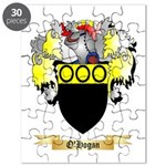 O'Hogan Puzzle