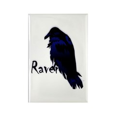 Raven on Raven Rectangle Magnet (10 pack)