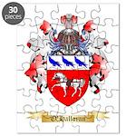 O'Halloran Puzzle