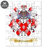O'Gowan Puzzle
