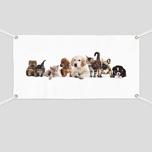 Cute Pet Panorama Banner