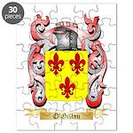 O'Gillan Puzzle