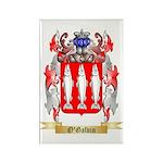 O'Galvin Rectangle Magnet (100 pack)