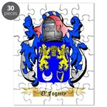 O'Fogarty Puzzle