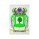 O'Flanagan Rectangle Magnet (10 pack)