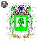 O'Flanagan Puzzle