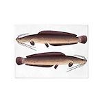 African Sharptooth Catfish 5'x7'Area Rug