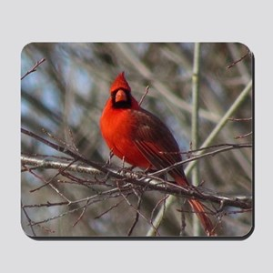 Male Cardinal Mousepad