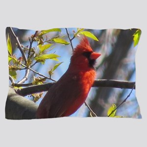 Male Cardinal Pillow Case