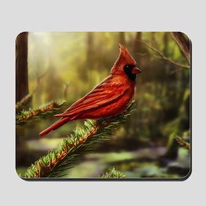 cardinal bird Mousepad