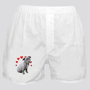 Valentine's Pitbull Puppy Boxer Shorts