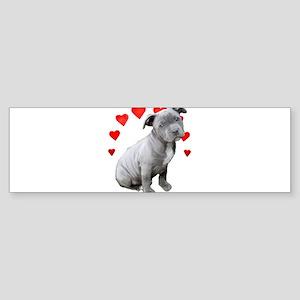 Valentine's Pitbull Puppy Bumper Sticker