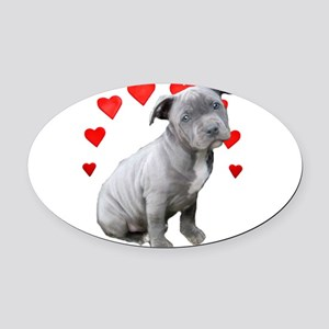 Valentine's Pitbull Puppy Oval Car Magnet