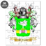 O'Fiaich Puzzle