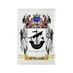 O'Driscoll Rectangle Magnet (10 pack)