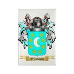 O'Doohan Rectangle Magnet (10 pack)