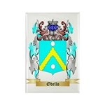 Odello Rectangle Magnet (100 pack)