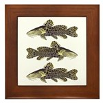 Giraffe Bubu Catfish Framed Tile