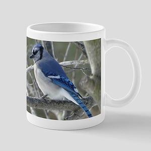 BLue jay Mugs